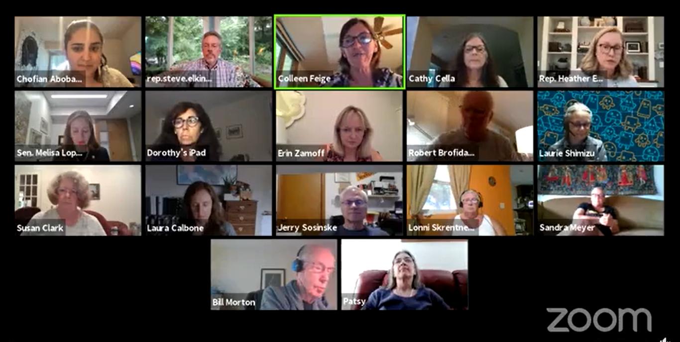 Screen cap of Zoom meeting recording